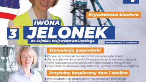 Kandydaci rekomendowani przez Nowoczesną do Sejmiku Województwa Śląskiego